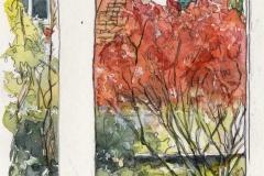Catherine Rossi, Fenêtre d'automne, Paris, @catherinerossi1q84